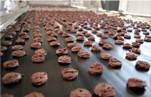 Baking Cookies on Steel Belt